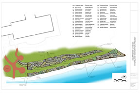 shoreland restoration plan