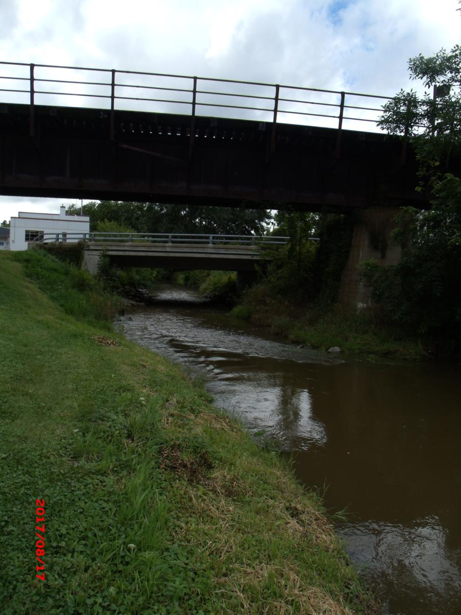Johnson Creek Watershed Alliance