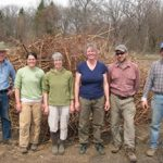 Knotweed harvest helpers